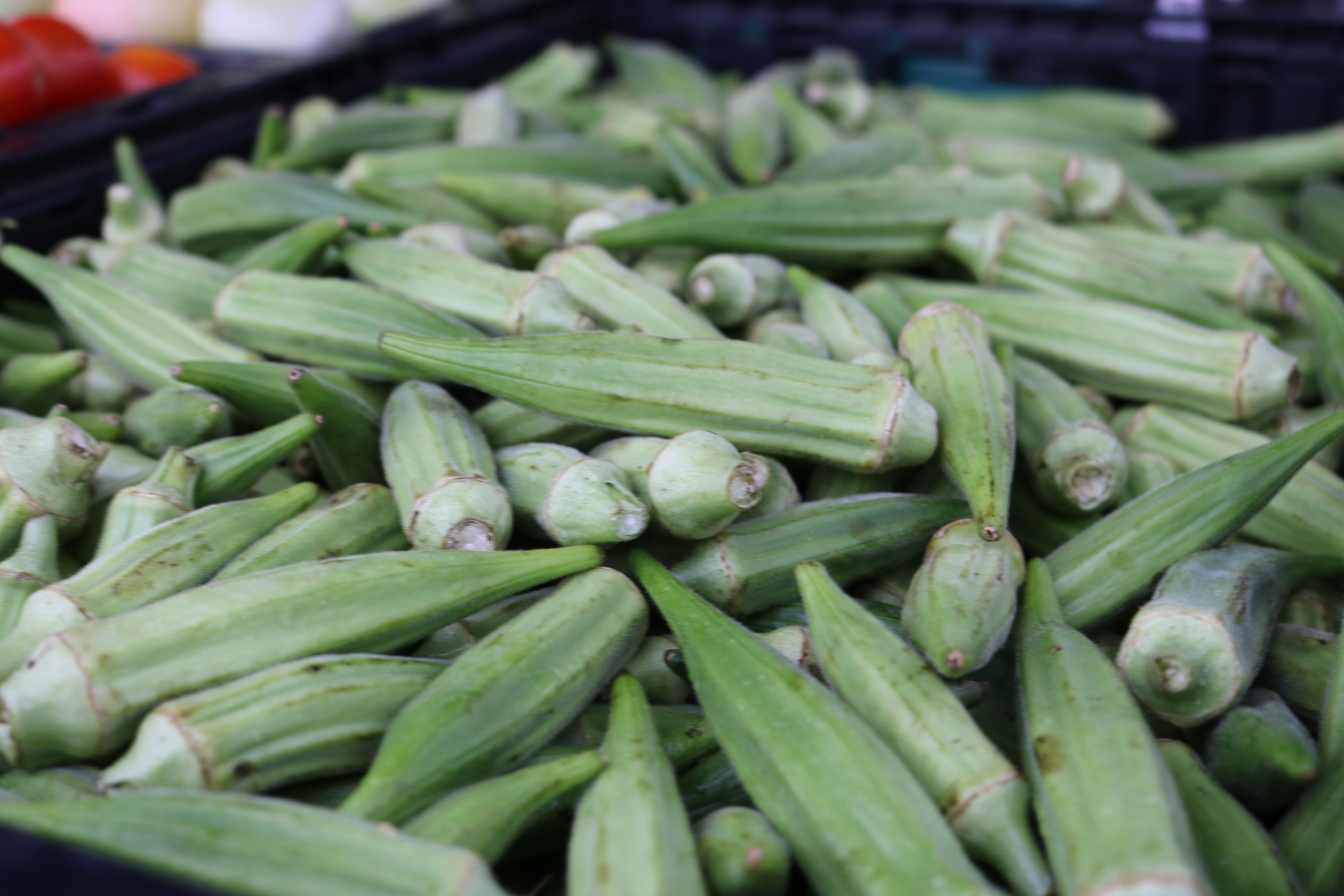 Veggie Spotlight Okra Onie Project