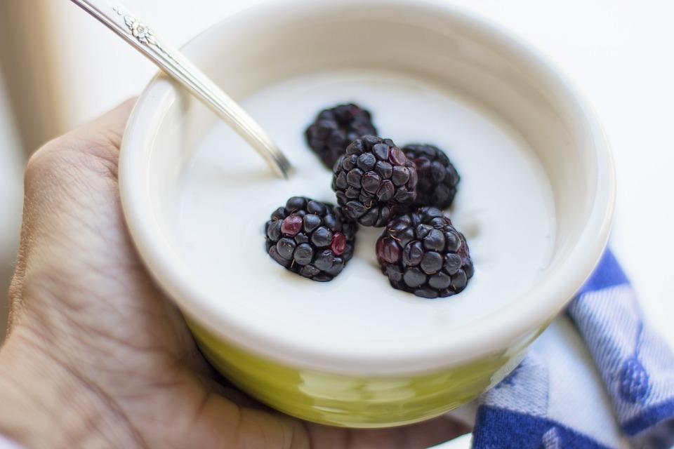 hand holding bowl of yogurt and blackberries