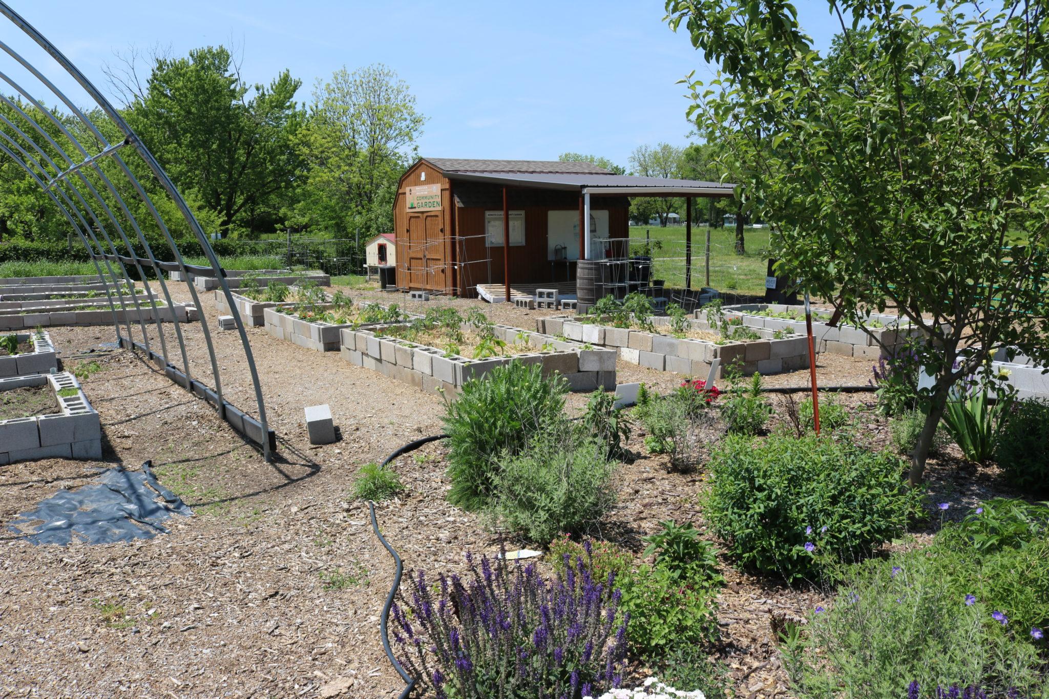Nowata garden